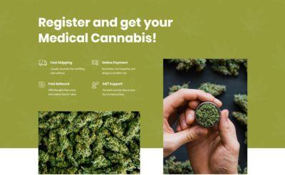 Medical marijuana info boxes
